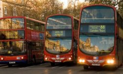 What do exhibitions and London buses have in common?