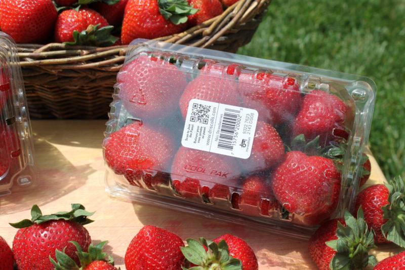 K600i printed Strawberries Label